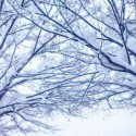 急に寒くなってきたので防寒対策!重ね着とは、つまり進撃の巨人である。